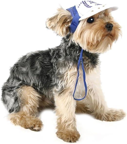 Yammucha - Sombrero deportivo para perro, gorra de béisbol, gorra ...