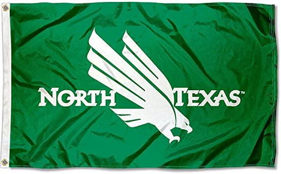 Multicolor NCAA College North Texas Mean Green 2x3 Wood Tailgate Toss Platinum College V Logo Game 24x36