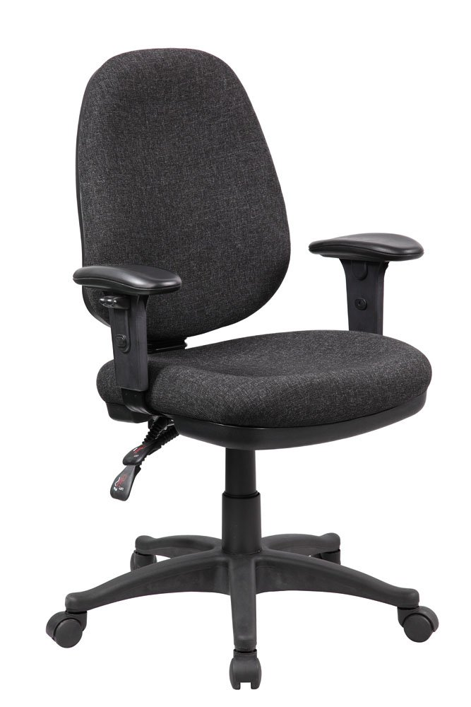 EuroStile Ergonomic Swivel Task Chair Home Office Desk Chair With Adjustable Back and Arms 1005 Grey