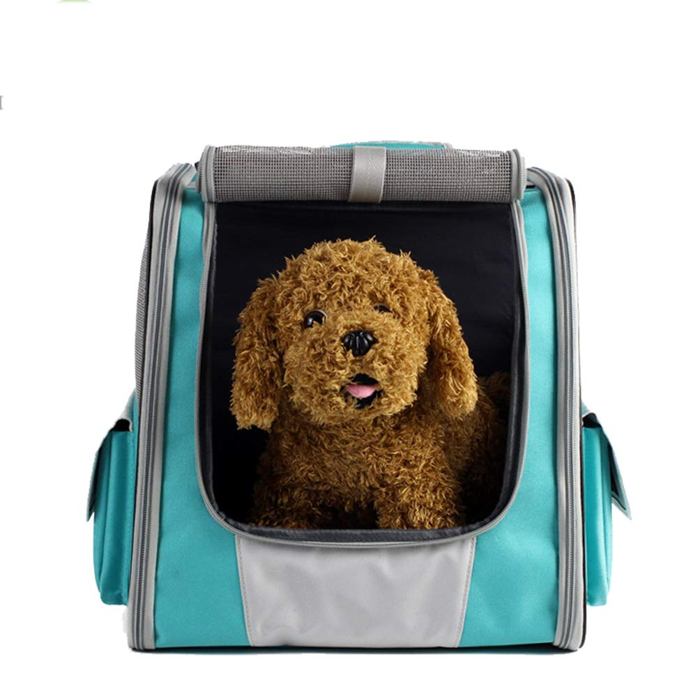 Green WYYZSS Fabric Foldable Pet Carrier Backpack for Dogs and Cats with Soft Fleece Breathable shoulders pet backpack out portable cat bag