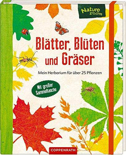 Blätter, Blüten und Gräser: Mein Herbarium für über 25 Pflanzen