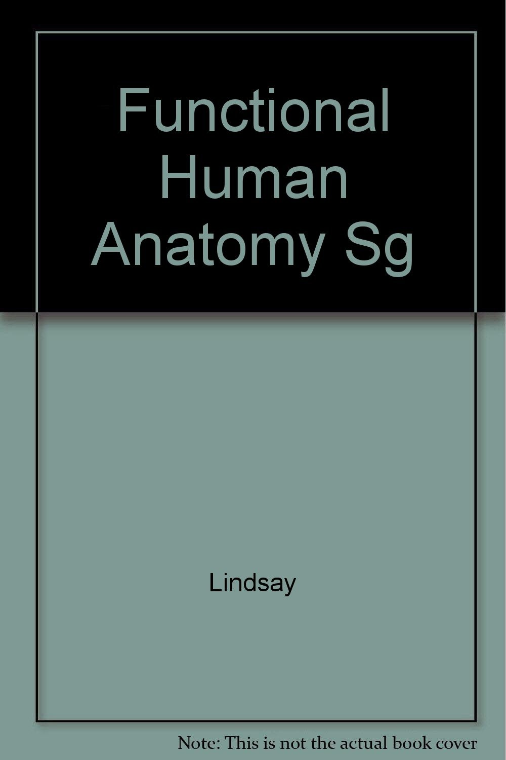 Study Guide To Accompany Lindsay Functional Human Anatomy Deloris