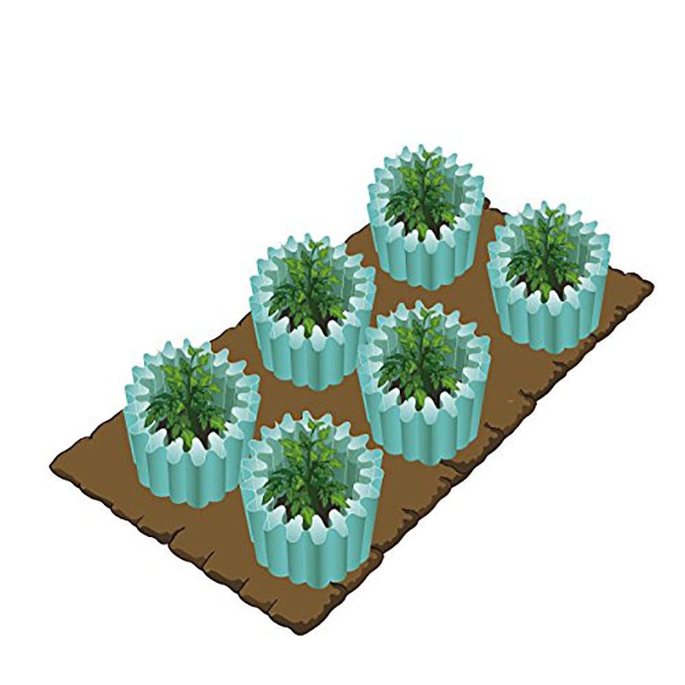Amazon.com : Wall Water Plant Protector, Season Extender, Gardening ...