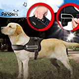 Dog Harness, IFLYING No Pull Harness Dog Leash Padded Pet Walking Harness Heavy Duty for Dogs (X-Large)