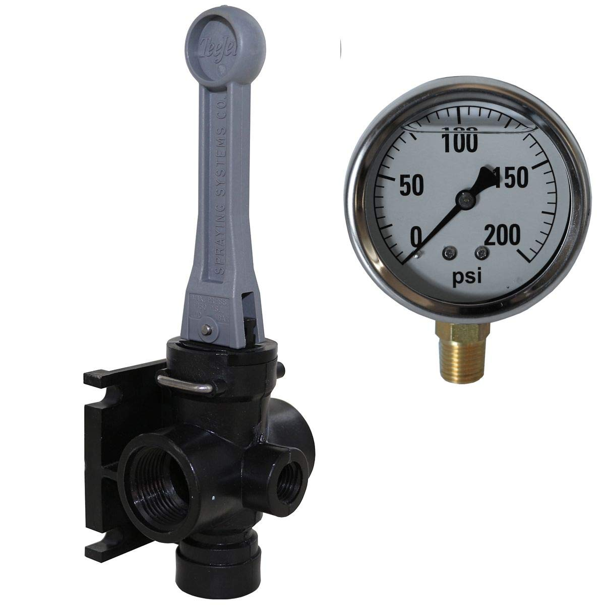 TeeJet AA6B DirectoValve Manual Control Valve with 200 PSI Pressure Gauge Bundle, 2 Items