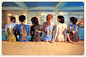 Pyramid America Pink Floyd Back Catalog Music Cool Wall Decor Art Print Poster 36x24