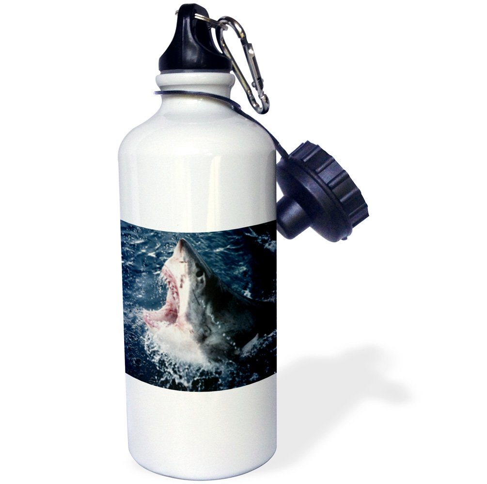 wb/_207247/_1 3dRose South Africa 21oz Multicolored Elevated Shark Mouth Open-Sports Water Bottle