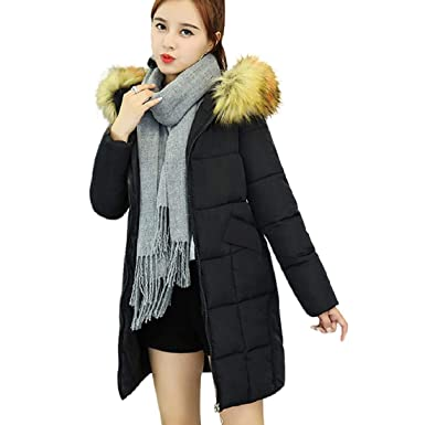 2fdff7fd521 Image Unavailable. Image not available for. Color  Women s Winter Warm Long  Coat Parkas Faux ...