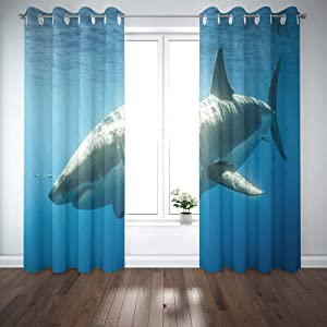 Shorping Window Curtains, Window Panels Sliding Blackout Curtains Cage Diving with Great White Sharks in Mexico Guadalupe Country Shower Curtain for Bedroom 52X63 Inches,2 Pc