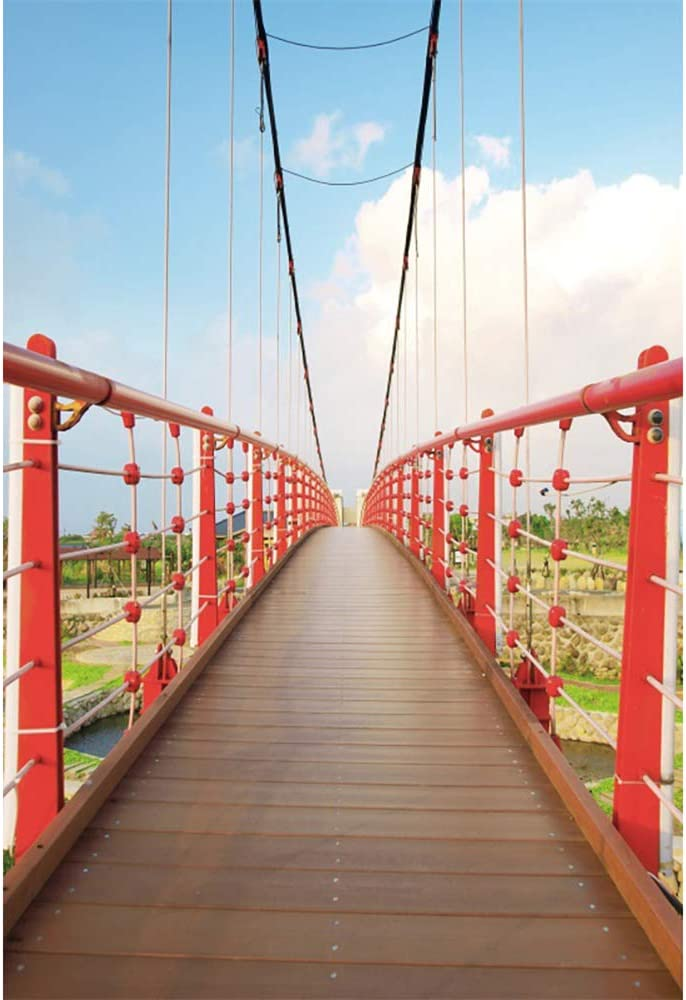 Leyiyi Red Bridge Backdrop 6x8ft Photography Backdrop Clear Lake Baby Blue Cloudy Sky Garden Park Tourist Attraction Backdrop Photo Booth Studio Props