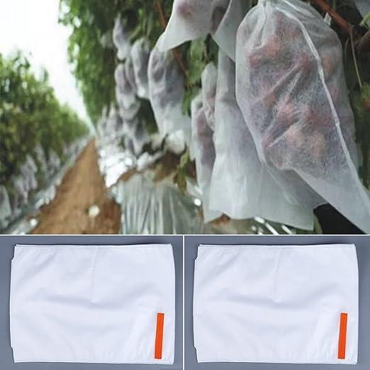 Excellent112 - Bolsa de protección para Frutas, para Plantas de jardín, con mosquitera: Amazon.es: Jardín