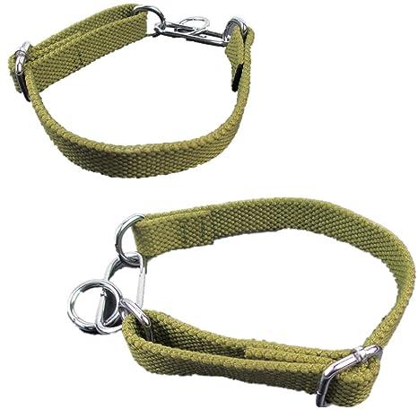 Collar para cachorro de perro, con anilla en D, ajustable, correa ...