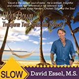 Slow Down: Transform Your Stress Into Success