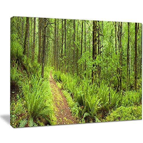 "Designart PT11137-20-12 Lush Path Columbia River-Forest Canvas Wall Art Print-20x12, 12"" H x 20"" W x 1"" D 1P -  Design Art"