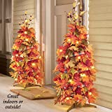 """44"""" Lighted Harvest Fall Thanksgiving Collapsible"""