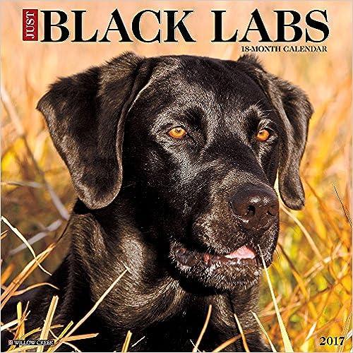 Livres anglais pdf téléchargement gratuit Just Black Labs 2017 Calendar 1682340309 PDF