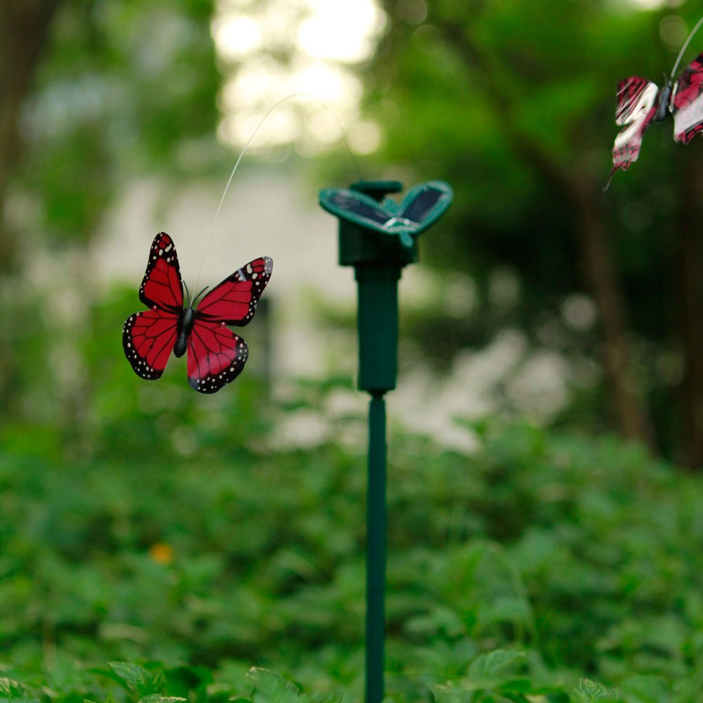 Amazon.com : Qiyun Solar Powered Flying Wobble Fluttering Butterfly :  Outdoor Figurine Lights : Patio, Lawn U0026 Garden