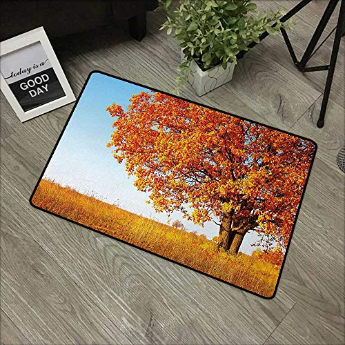 Printed Door mat W16 x L24 INCH Fall,Lonely and Ancient Oak Tree Grass Bushes Field Serene Rural Scenery,Orange Yellow Pale Blue Easy to Clean, no Deformation, no Fading Non-Slip Door Mat Carpet (Bush Reducer)