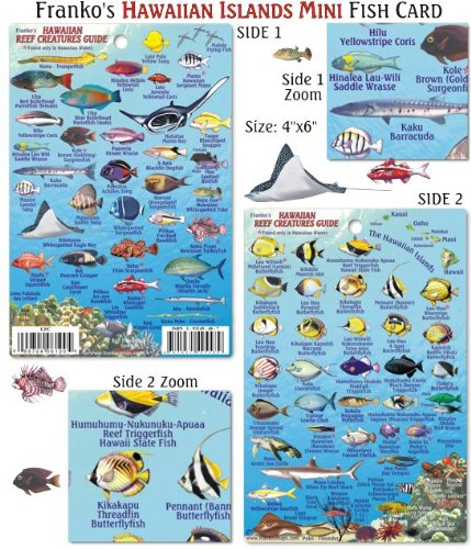 Franko Maps Mini Hawaiian Reef Creatures Fish ID for Scuba Divers and Snorkelers