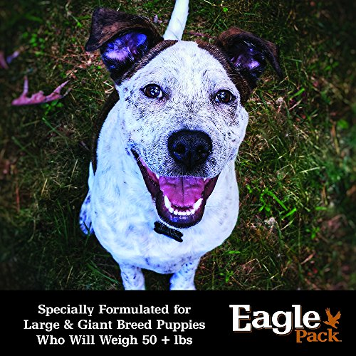 Eagle-Pack-Natural-Dry-Large-Breed-Puppy-Food-Lamb-Chicken-Fish-30-Pound-Bag