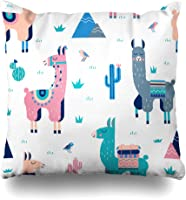 Kutita Decorative Pillow Covers 20 x 20 inch Throw Pillow Covers, Cute Cactus Birthday Cool American Animal Desert Map...