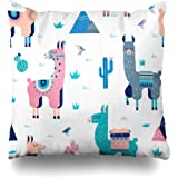 Kutita Decorative Pillow Covers 20 x 20 inch Throw Pillow Covers, Cute Cactus Birthday Cool American Animal Desert Map Modern Pattern Double-Sided Decorative Home Decor Pillowcase