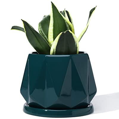POTEY 052706 Plant Pot with Drainage Hole & Saucer - 4.7 Inch Glazed Ceramic Modern Geometric Shaped Planters Indoor Bonsai Container for Plants Flower Aloe(Shiny Green, Plants Not Included): Garden & Outdoor