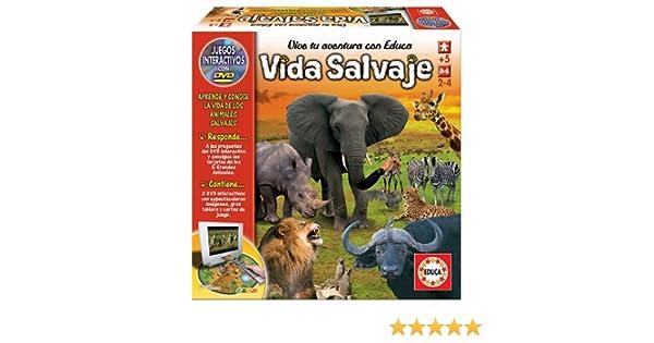 Educa Borrás 14049 - Vida Salvaje: Amazon.es: Juguetes y juegos