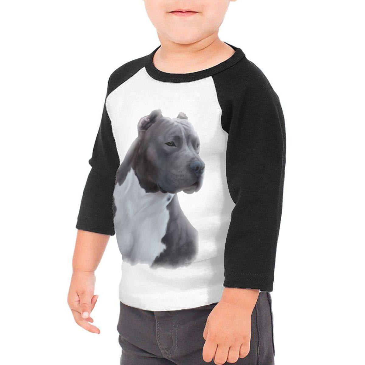 Kocvbng I Grey Pitbull Raglan 3//4 Sleeves Tshirt for Girls Boys
