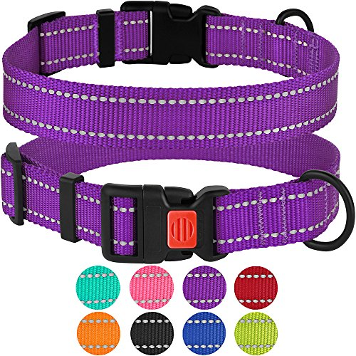 CollarDirect Reflective Dog Collar with Buckle Adjustable Safety Nylon Collars for Dogs Small Medium Large Pink Black…