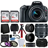 Canon EOS Rebel SL2 Digital SLR Camera + EF-S 18-55mm f/4-5.6 IS STM Lens + Wide Angle & Telephoto Lens + 48GB Memory Card + Photo4Less DC59 Gadget Bag + Flexible Tripod – Valued Accessory Bundle