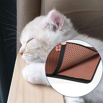 FISOUL - Esterilla de Arena para Gatos: Amazon.es: Productos para ...