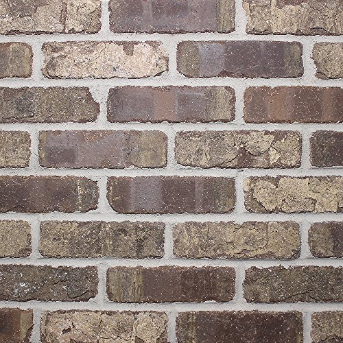 Brickweb - Café Mocha Sample (3 Bricks) ()