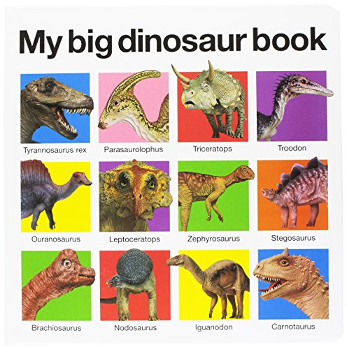 Prehistoric Animals Card - My Big Dinosaur Book (My Big Board Books)