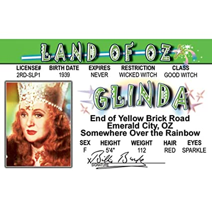 Signs Fun License 4 com Kitchen Driver's Nozidg amp; Glinda's Home Amazon