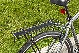 Schwinn Bike Rear Rack Bicycle Accessories, Folding Rear Rack