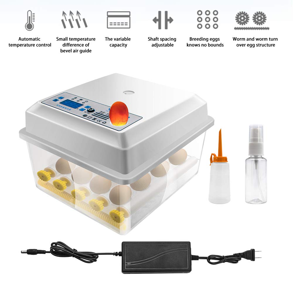 JoaSinc Incubadoras de Huevos Automaticas 16 Huevos, Pantalla Digital e Completamente Automático Control de Temperatura de Giro, para Gallinas, Patos, Gansos, Codornices, Uso doméstico