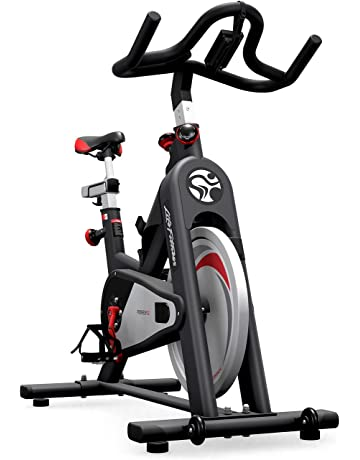 Life Fitness IC2 Group Exercise Bike Powered by ICG (ANT+ Console)