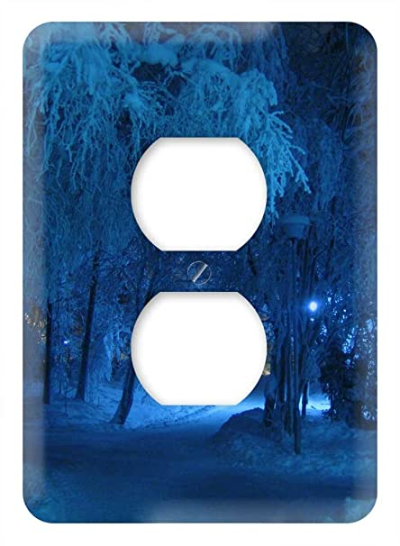 Amazon.com: WaPlate - Blue Winter Forest! - Switch Plate ...