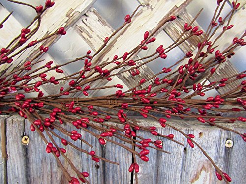 """Gorgeous Primitive RED 55"""" Pip Rice Berry GARLAND Flexibl..."""