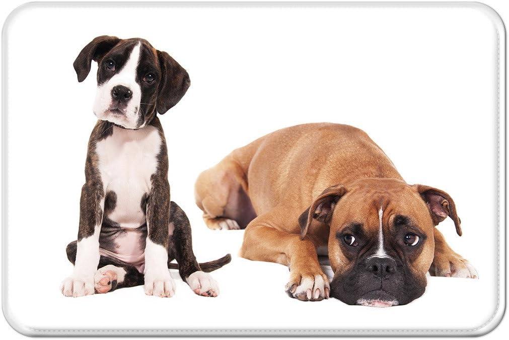 violetpos – Felpudo (perro divertido Bulldog felpudos Mat para interior y exterior, 45 x 75 cm: Amazon.es: Hogar