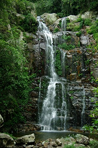Home Comforts LAMINATED POSTER Rainforest Waterfall Nature P