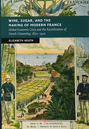 Wine, Sugar, and the Making of Modern France: Global Economic Crisis and the Racialization of French Citizenship, 1870-1910 (New Studies in European History)