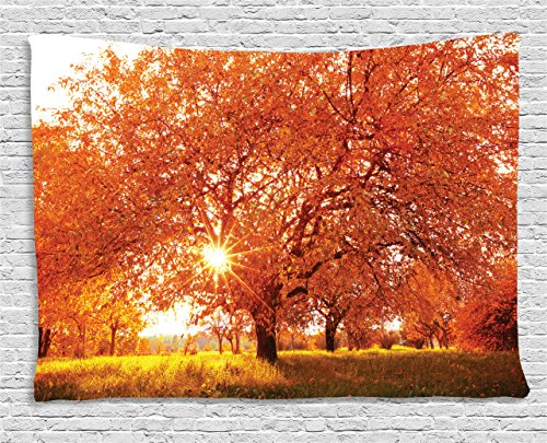 Ambesonne Landscape Tapestry by, Autumn Season Fall Trees Sunset in Garden Plant Leaves Relaxing Art Photo, Wall Hanging for Bedroom Living Room Dorm, 60WX40L Inches, Vermillion Yellow
