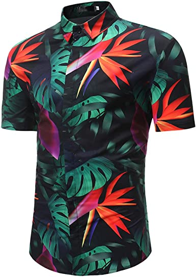 PARVAL Camisa Hawaiana con Estampado Floral de Hombre Hombres | Manga Corta | Bolsillo Delantero | Impresión Hawaiana | Grandes Flores Hojas Verano Playa M-3XL.: Amazon.es: Ropa y accesorios