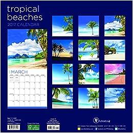 2017 tropical beaches wall calendar tf publishing 9781624387517 books. Black Bedroom Furniture Sets. Home Design Ideas
