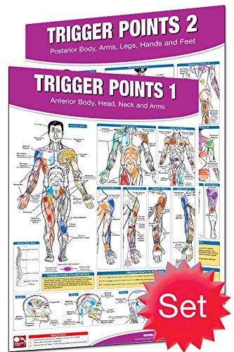 Productive Fitness Laminated Fitness Poster - Trigger Points - Set of 2 (Anterior and Posterior) - 24