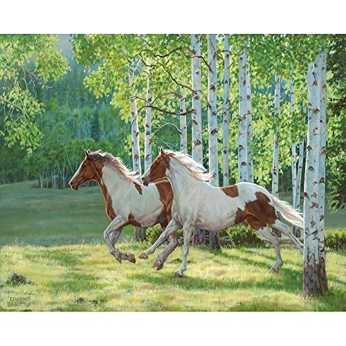 White Mountain Puzzles Aspen Run - 1000 Piece Jigsaw Puzzle by White Mountain Puzzles made in New England