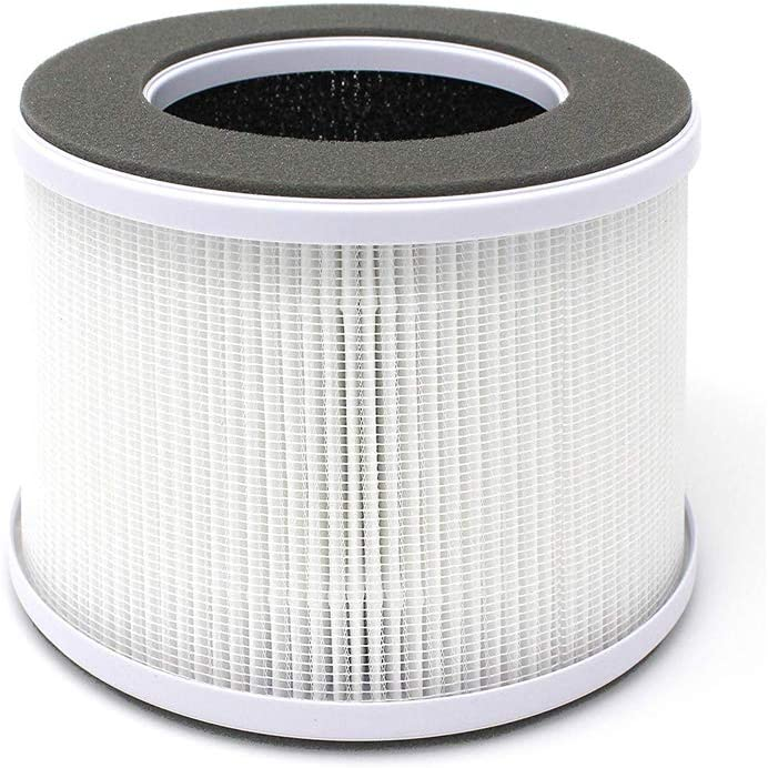 RIGOGLIOSO True HEPA Air Purifier Filter Replacement Compatible for Home Ionic Air Purifiers Small Air Cleaning System for Home, Office Desk, Room or Desktop.GL2109