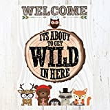 Best unknown Friends Gifts Signs - Woodland Forest Friends Hipster Themed Party Supply Fox Review